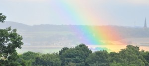 tankersley-park-rainbow