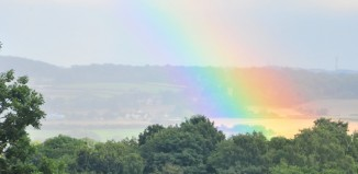 tankersley-park-rainbow
